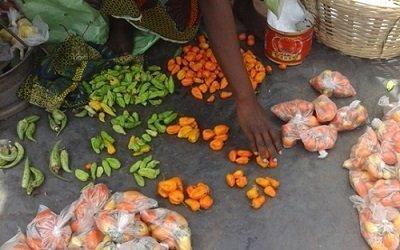 805910 pénurie legumes