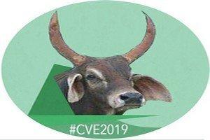 logo CVE 0896 n
