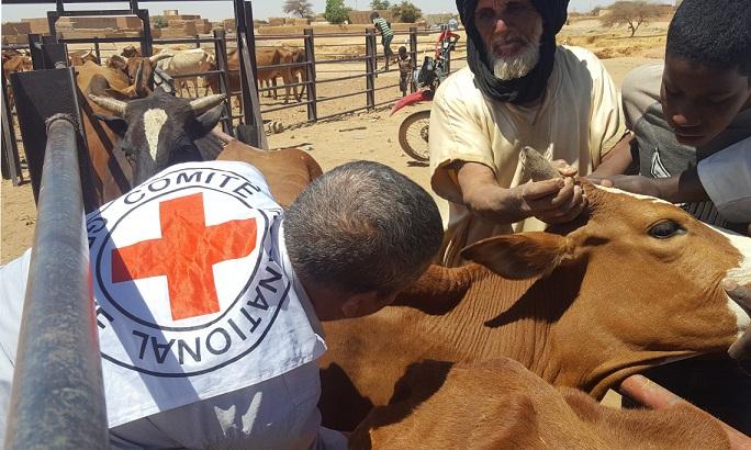 mauritanie vaccination bassikounou periode de covid 19